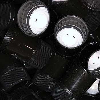 Botellas no rellenables y con cierres de seguridad - AOVE Oleoext