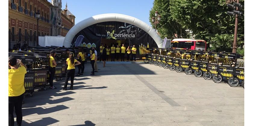 Málaga, durante una semana, Capital de Los Aceites de Oliva de España